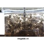 Xử lý nước thải dệt nhuộm  bằng hóa chất khử màu MegaDCA